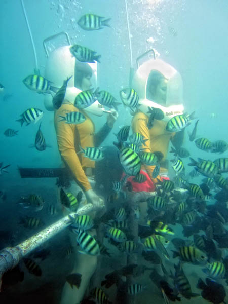 Bali Ocean Walker Sensasi Berjalan Di Dasar Laut Paket